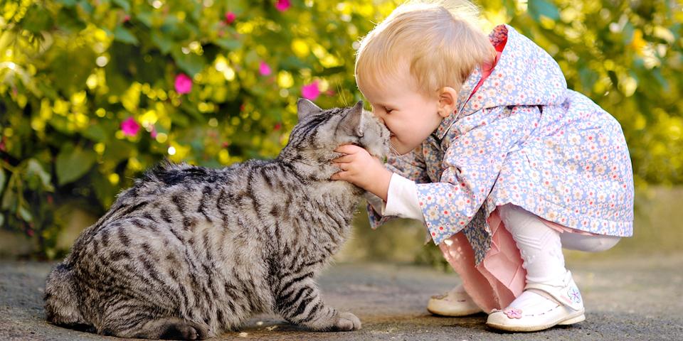 Evcil hayvanlarla Büyüyen Çocuklar Daha Mutlu!