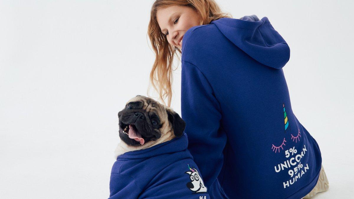 Koton, Love Koleksiyonu ile  10.000 Sokak Hayvanına Göz Kulak Oluyor