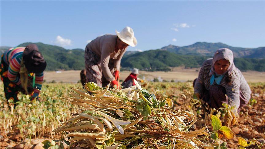 Türkiye'nin geleceğini ilgilendiren proje: 10 ilde tarım eğitimi heyecanı başladı