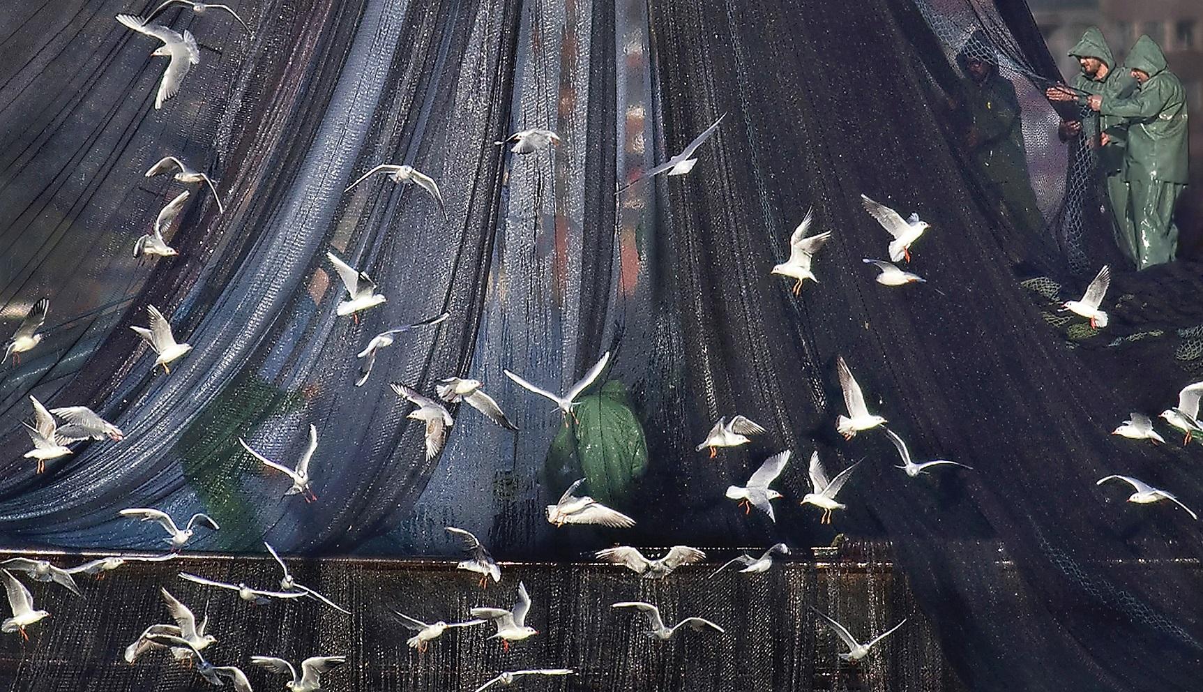 Kadın Gözüyle Hayattan Kareler Fotoğraf Sergisi Dijitale Taşındı