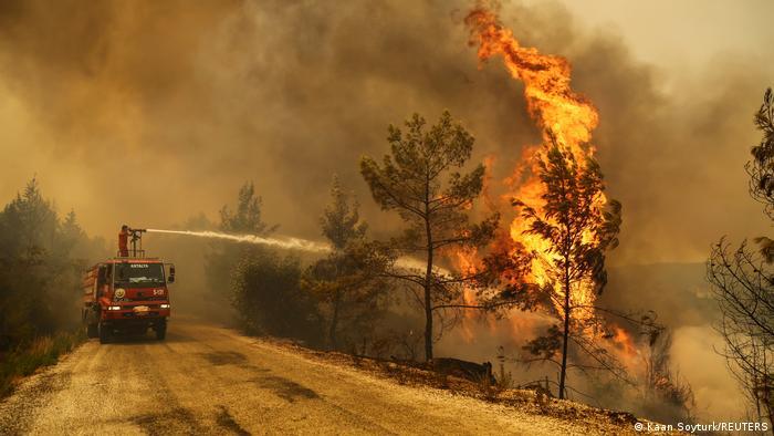 Yangınlar Sürerken Yardım Tartışması