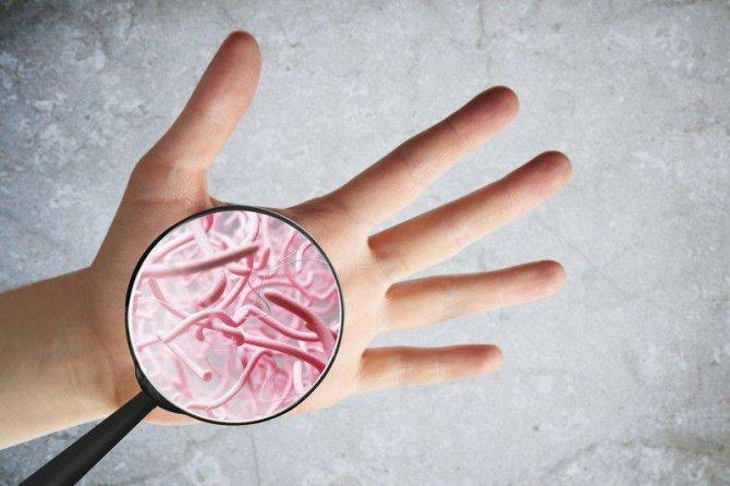 cilt-bakterilerinin-cilt-kanserine-karsi-koruyucu-faydalari-397629.jpg